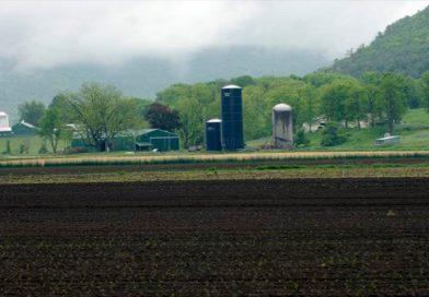 Tarımda Güvenlik Uygulamaları