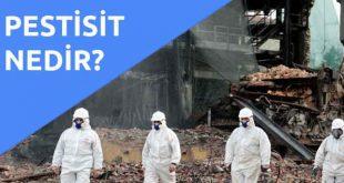 asbest nedir